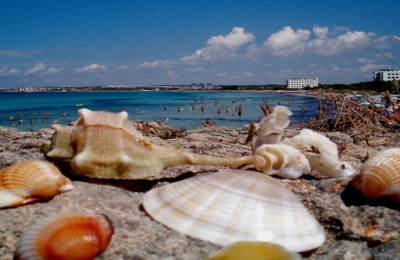 Apulia self-guided bike tour in Italy