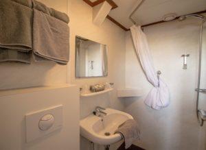 Bordeaux bathroom bike boat tour