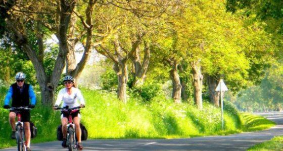 ruta ciclismo hungria lago balaton